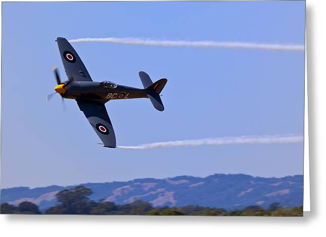Smoke Trail Greeting Cards - Hawker Sea Fury Greeting Card by Garry Gay
