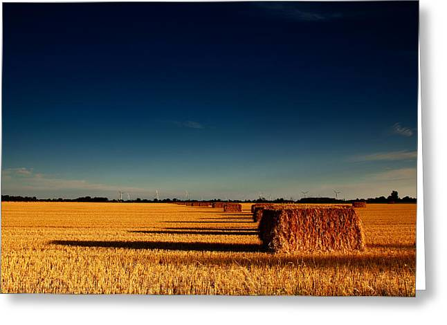 Bale Greeting Cards - Hay Bales Greeting Card by Cale Best