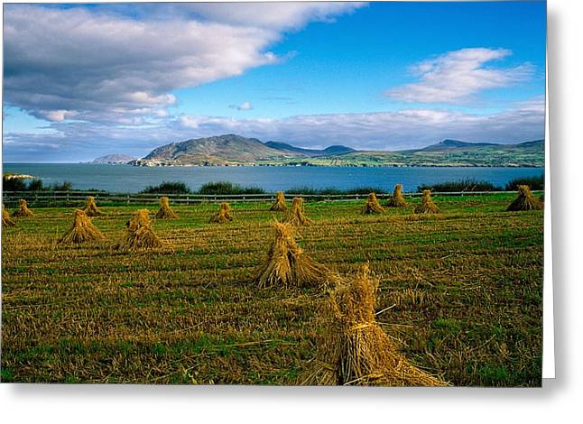 Hay Bales Greeting Cards - Hay Bales In A Field, Ireland Greeting Card by The Irish Image Collection