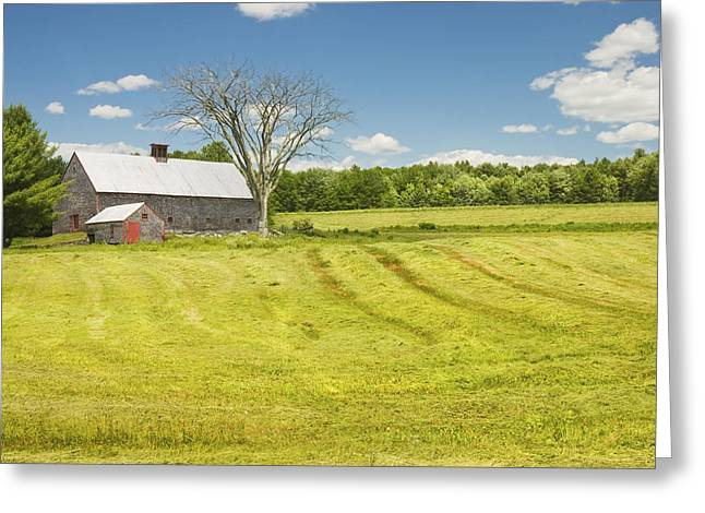 Old Maine Barns Greeting Cards - Hay Being Harvested Near Barn In Maine Greeting Card by Keith Webber Jr