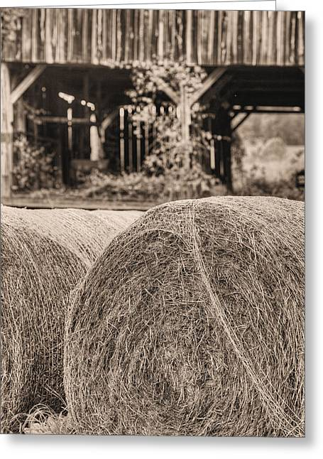 Hay Bales Greeting Cards - Hay BW Greeting Card by JC Findley