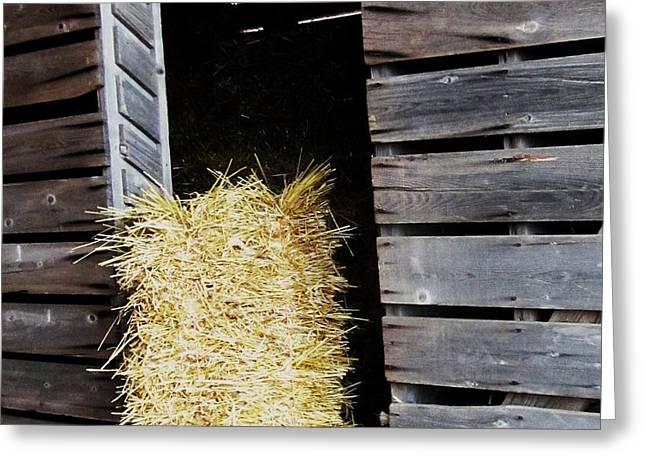 Hay-Day Greeting Card by TODD SHERLOCK