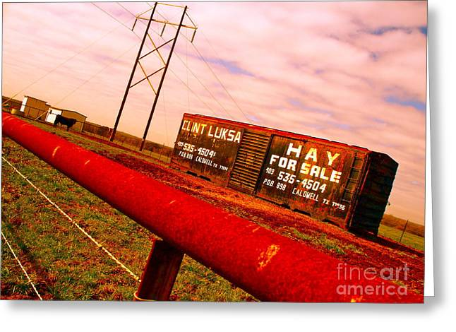Boxcars Greeting Cards - Hay for Sale Greeting Card by Chuck Taylor