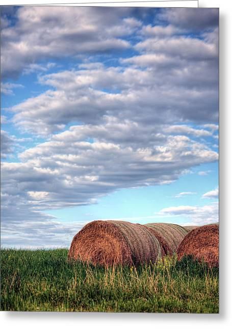 Haybale Greeting Cards - Hay Its Art Greeting Card by JC Findley