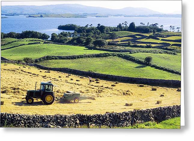 Harvest Time Greeting Cards - Hay Making, Lough Corrib, Co Galway Greeting Card by The Irish Image Collection
