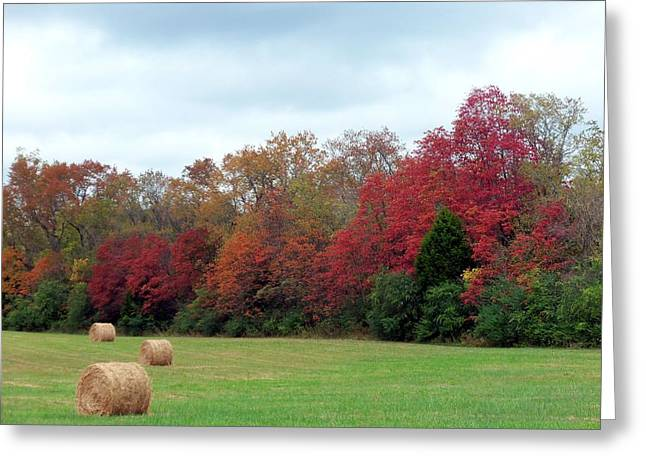 Franklin Farm Greeting Cards - Hay October Greeting Card by Kay Sawyer