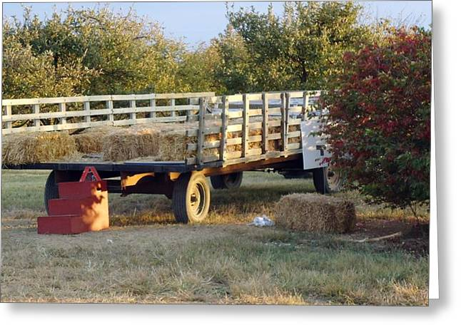 Hayride Greeting Cards - Hay Ride Greeting Card by Karen Wallace