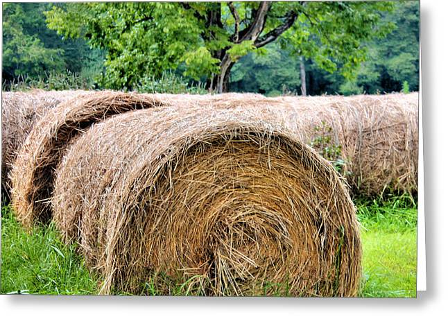 Hay Bales Greeting Cards - Hay Rolls Greeting Card by Kristin Elmquist