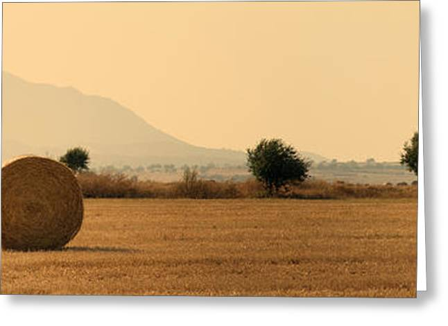 Rural Scenery Greeting Cards - Hay Rolls  Greeting Card by Stylianos Kleanthous