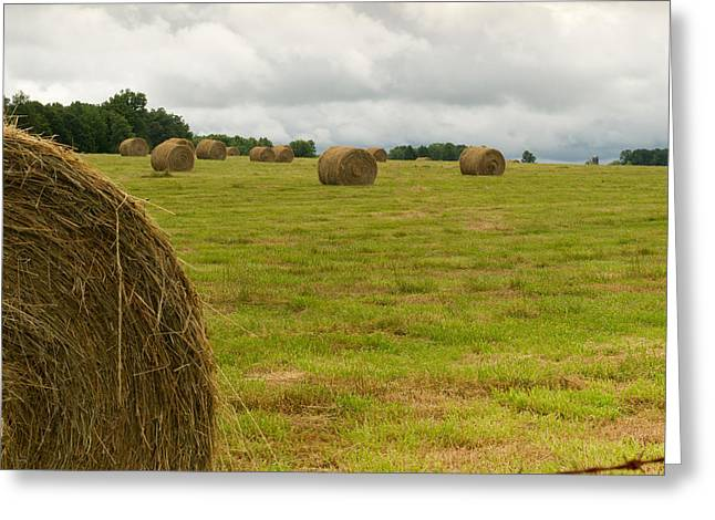 Haybales Photographs Greeting Cards - Haybales in Field on Stormy Day Greeting Card by Douglas Barnett