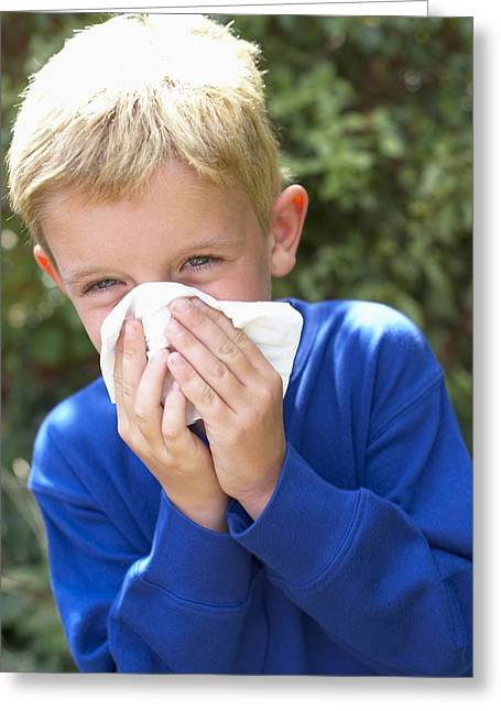 Handkerchief Greeting Cards - Hayfever Greeting Card by Ian Boddy