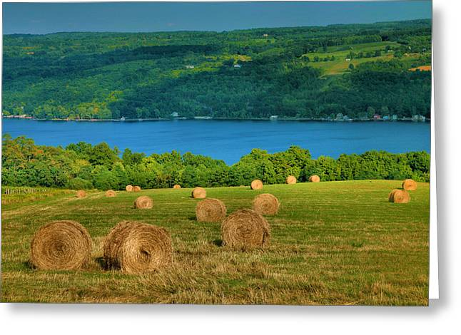 Pasture Framed Prints Greeting Cards - Hayfield And Lake IV Greeting Card by Steven Ainsworth