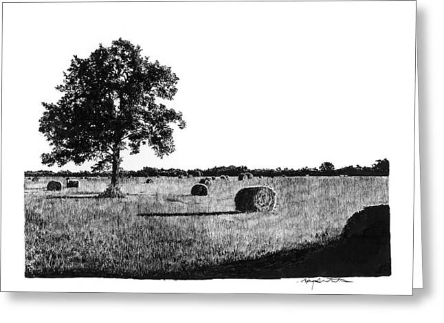 Bale Drawings Greeting Cards - Hayfield Greeting Card by Gary Gackstatter