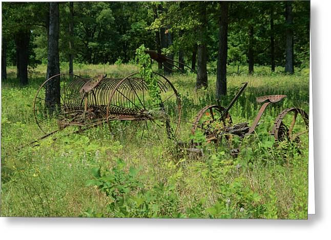 Pastue Greeting Cards - Hayrake and Cutter in the Weeds 2 Greeting Card by Douglas Barnett