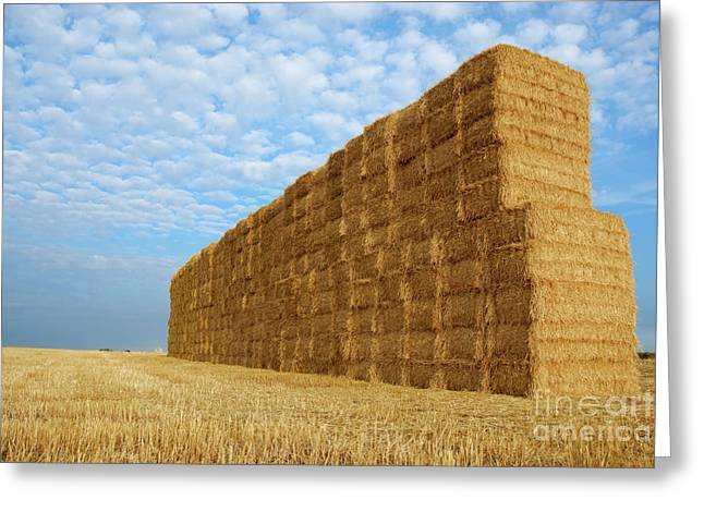 Bale Greeting Cards - Haystack in field Greeting Card by Sami Sarkis