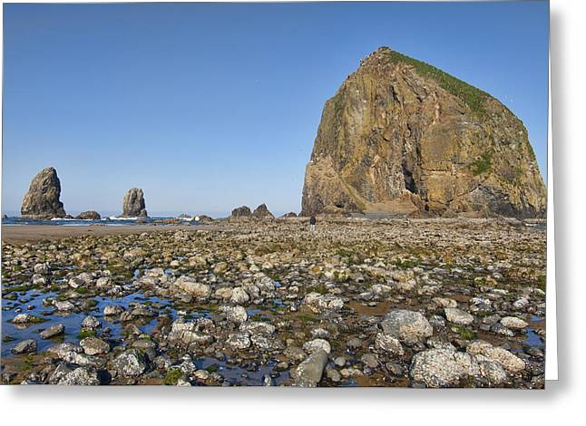Abstract Digital Pyrography Greeting Cards - Haystack Rock 2 Greeting Card by Mauro Celotti
