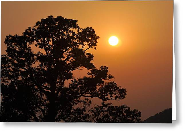 Hazy Sunset Greeting Card by Marty Koch