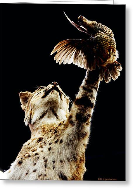 Bobcats Photographs Greeting Cards - He Got Away Greeting Card by DiDi Higginbotham