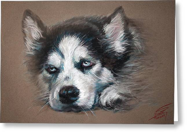 Dog Pastels Greeting Cards - He is Watching You  Greeting Card by Ylli Haruni