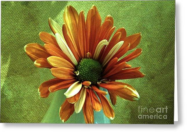 Olive Green Greeting Cards - He Loves Me Greeting Card by Marsha Heiken