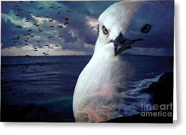 He Spotted Land And Knew He Was Home Greeting Card by Karen Lewis
