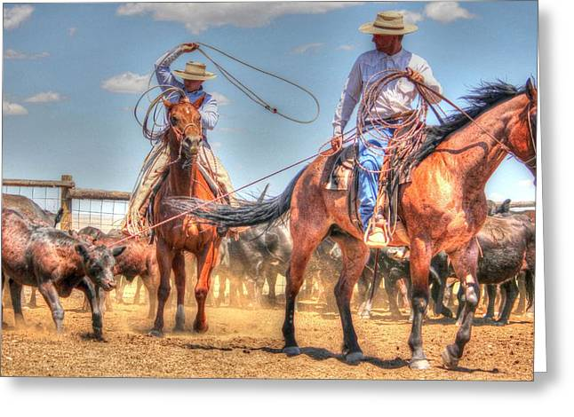 Roping Horse Greeting Cards - Head and Heel Greeting Card by Vikki Correll