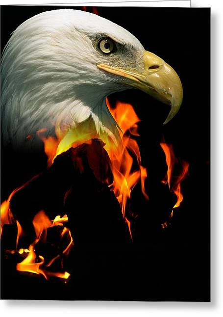 Visual Metaphor Greeting Cards - Head Of A Bald Eagle Over Fire Greeting Card by Robert Bartow