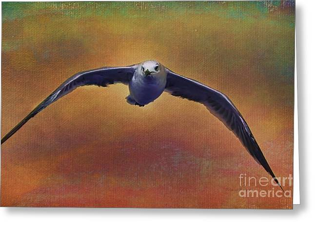 Flying Seagull Mixed Media Greeting Cards - Heading Home Greeting Card by Deborah Benoit