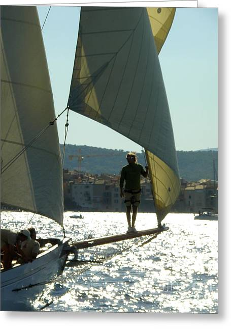 St.tropez Greeting Cards - Heading to Port Greeting Card by Lainie Wrightson