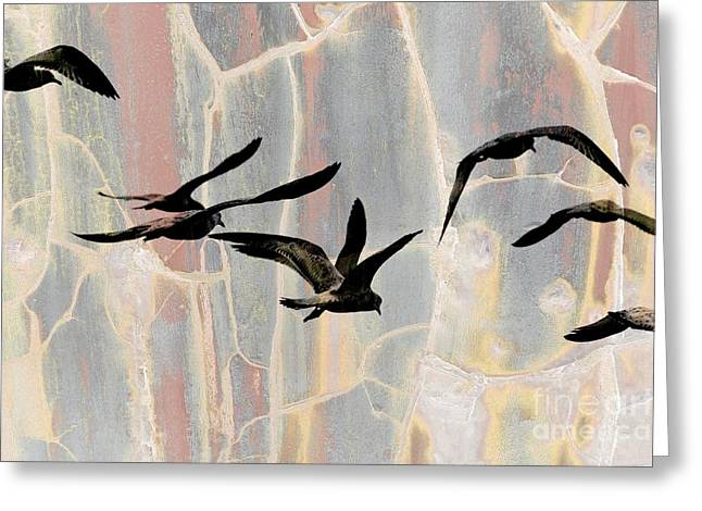 Seabirds Mixed Media Greeting Cards - Heading West  Greeting Card by Elaine Manley