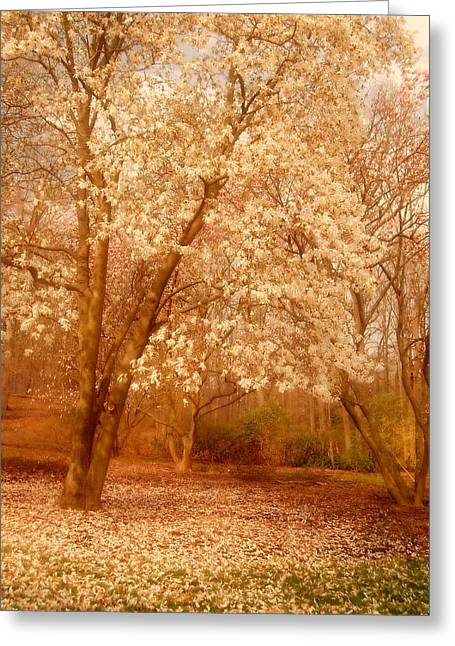 Easter Flowers Greeting Cards - Hear the Silence - Holmdel Park Greeting Card by Angie Tirado