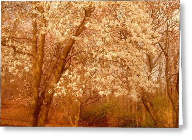 Hear the Silence - Holmdel Park Greeting Card by Angie Tirado