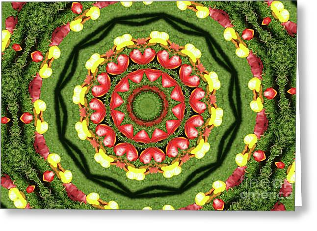 Heart Kaleidoscope Greeting Card by Mariola Bitner