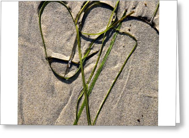 Heart Strings Greeting Card by Peter Tellone