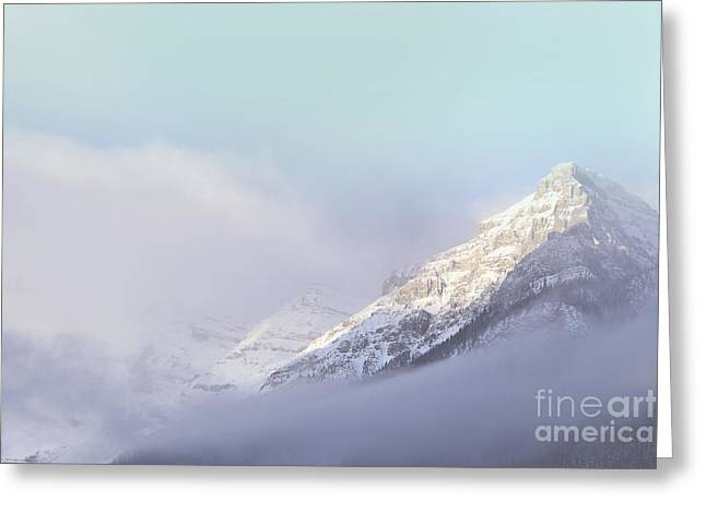 Framed Winter Snow Photograph Greeting Cards - Heavenly Greeting Card by Andrea Hazel Ihlefeld