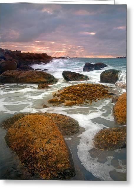 Fleurieu Peninsula Greeting Cards - Heavenly Dawning Greeting Card by Mike  Dawson