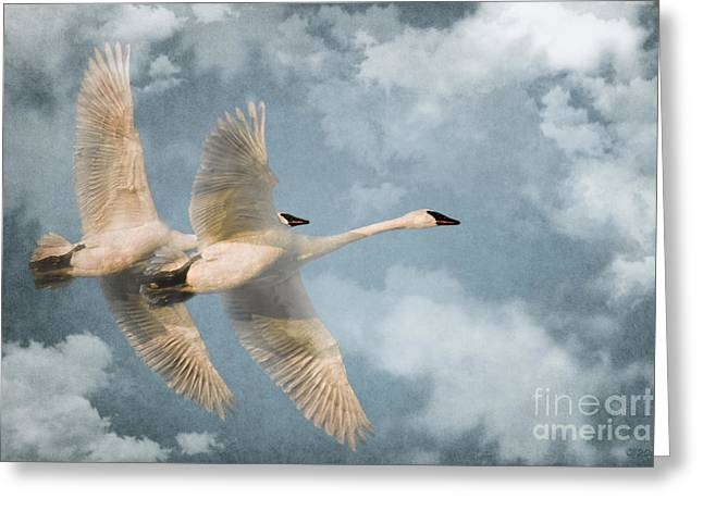 Trumpeters Greeting Cards - Heavenly Flight Greeting Card by Reflective Moments  Photography and Digital Art Images
