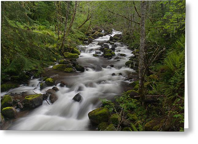 Forest Creek Greeting Cards - Heavenly Flow Greeting Card by Mike Reid