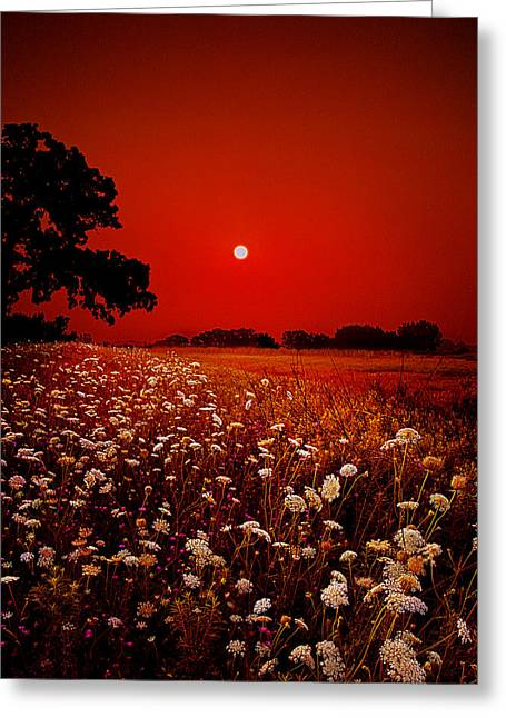Geographic Greeting Cards - Heavenly Peace Greeting Card by Phil Koch