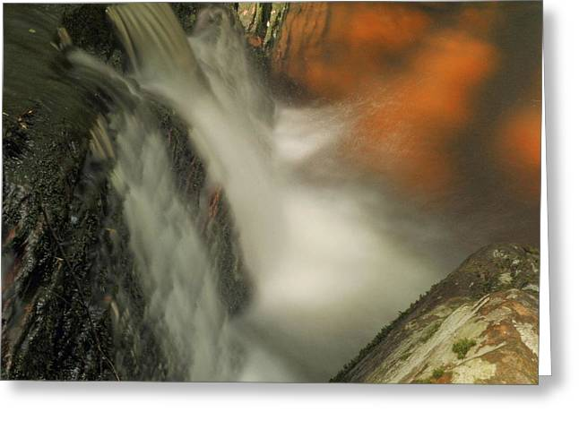 Stokes State Forest Greeting Cards - Heavenly Sunlight Greeting Card by Stephen  Vecchiotti