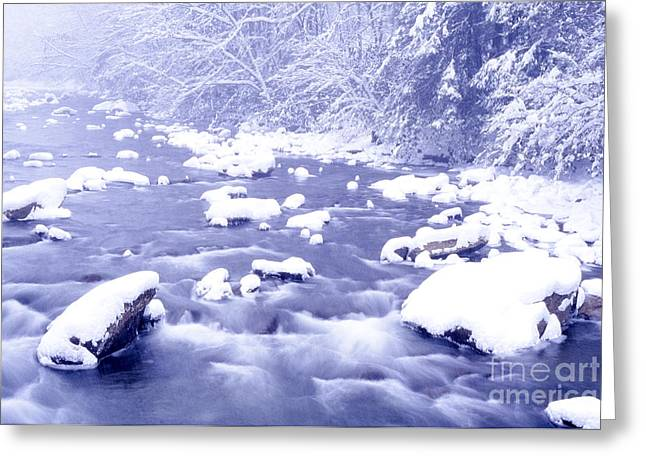 Nicholas County Greeting Cards - Heavy Snow Cranberry River Greeting Card by Thomas R Fletcher