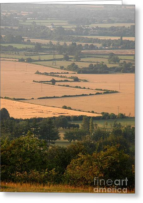 Pattern Photographs Greeting Cards - Hedgerows of England Greeting Card by Andy Smy