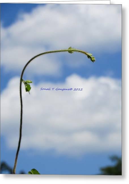 Aim High Greeting Cards - Help Me Grow Greeting Card by Sonali Gangane