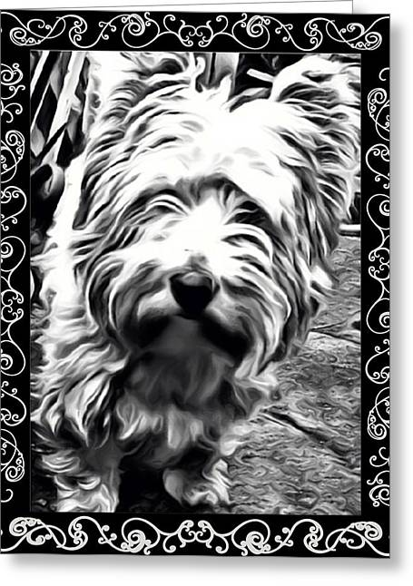 Puppies Greeting Cards - Heres looking at you Greeting Card by Tisha McGee