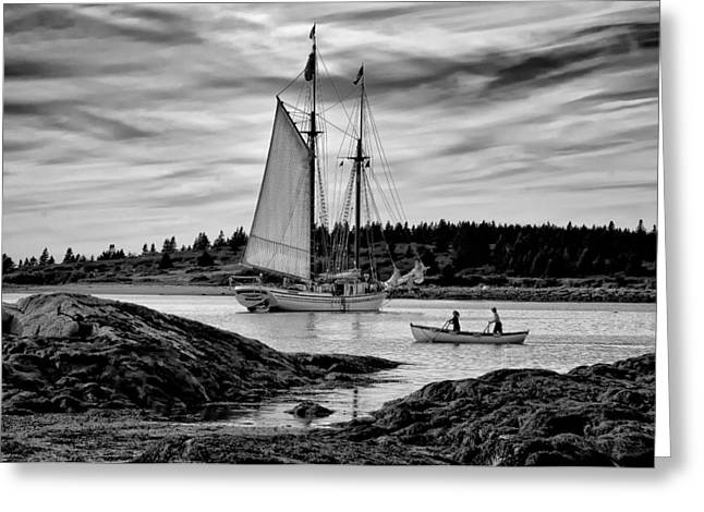 Schooner Greeting Cards - Heritage Anchored Greeting Card by Fred LeBlanc