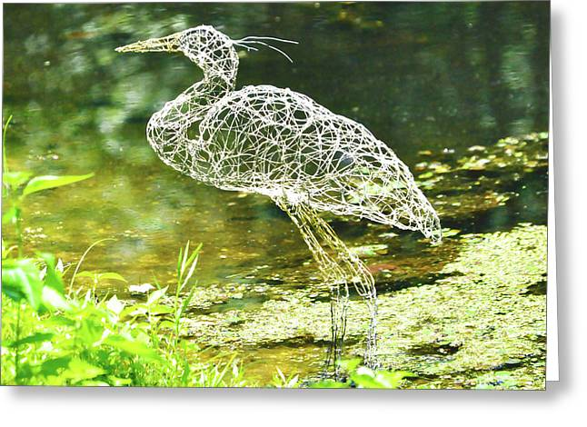 Sandy Calder Greeting Cards - Heron day shot at the pond   Greeting Card by Tommy  Urbans