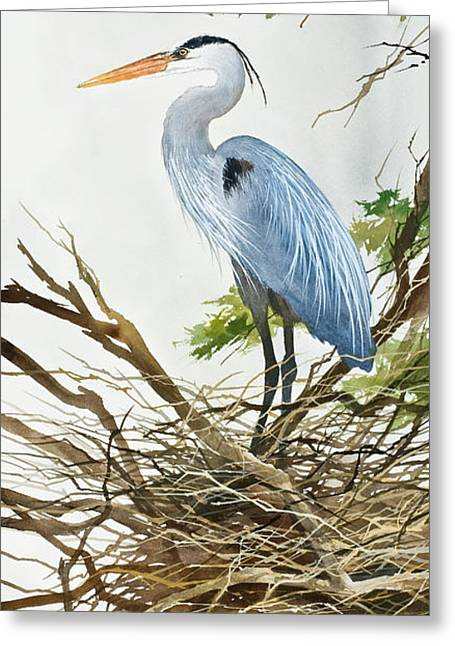 Heron Greeting Cards - Herons Nest Greeting Card by James Williamson
