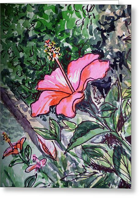 Hibiscus Greeting Cards - Hibiscus Sketchbook Project Down My Street  Greeting Card by Irina Sztukowski