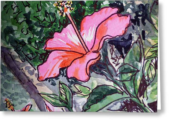 Hibiscus Sketchbook Project Down My Street  Greeting Card by Irina Sztukowski