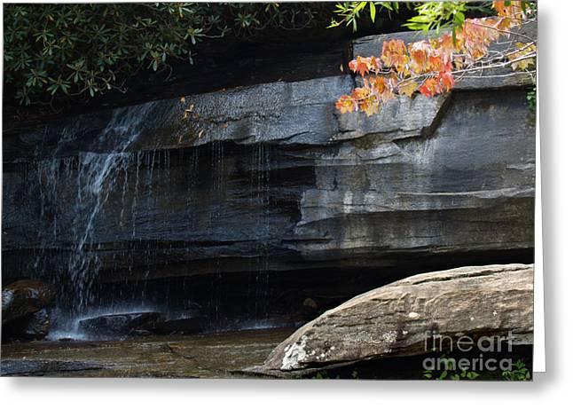Chimney Rock North Carolina Greeting Cards - Hickory Nut Falls at Chimney Rock NC Greeting Card by Anna Lisa Yoder